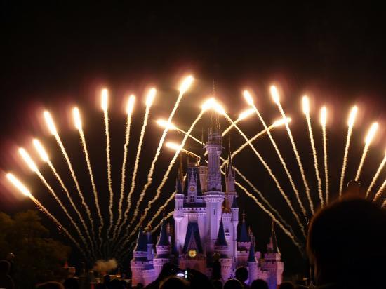 Fireworks Over Cinderella Castle In Magic Kingdom Orlando Picture