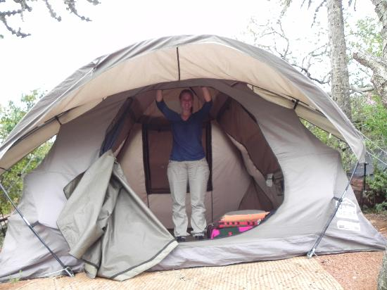Maji Moto Eco C& Our comfortable tent & Our comfortable tent - Picture of Maji Moto Eco Camp Maasai Mara ...