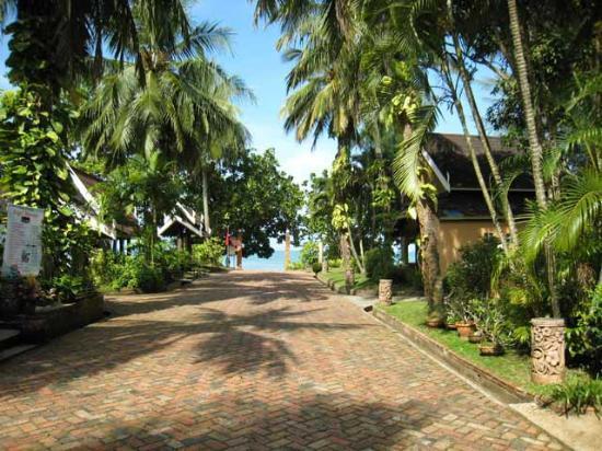 Krabi Resort : View doen to the beach/sea
