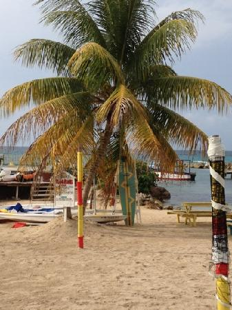 Franklyn D Resort & Spa: Beautiful Beach at FDR