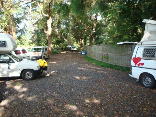 Nimbin Rox YHA: Van park