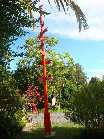Nimbin Rox YHA: Garden