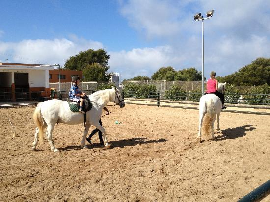 Sun Club Eldorado: horse riding lessons free for kids