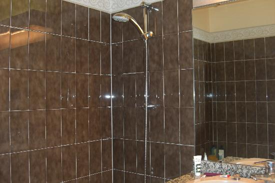 Mercure Courchevel: Shower