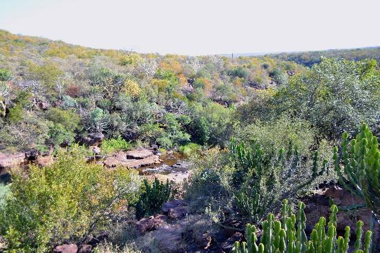 Bushbuck Rock Valley: The view from our balcony