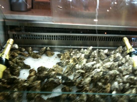 Loch Fyne - Cowbridge: seafood bar 2