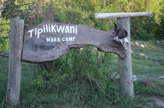 Tipilikwani Mara Camp - Masai Mara 사진