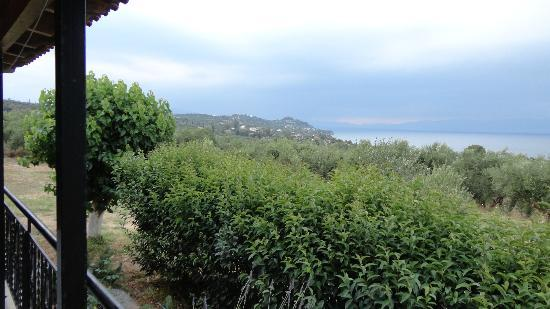 SaintFriday's Holiday Villas: overgrown hedge- stand up to see the sea!
