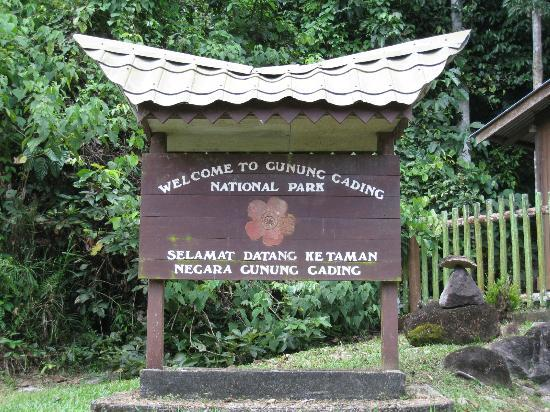 ‪Gunung Gading National Park‬