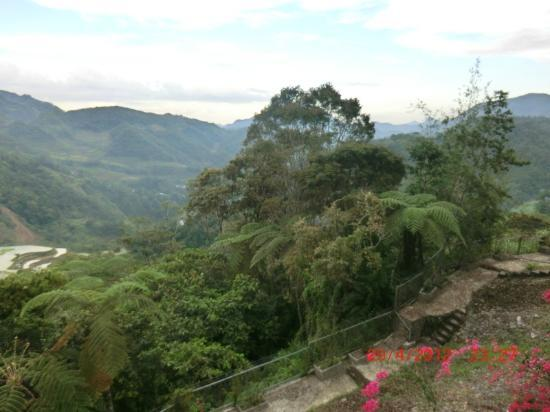 Banaue Hotel and Youth Hostel: Local views