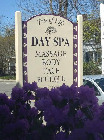 Tree of Life Day Spa: Great Spa
