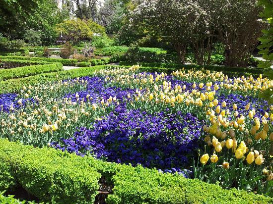 Suite Prado Hotel: Botanical Gardens