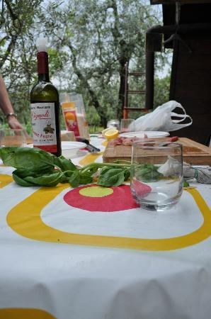 The Spice Lab: Cooking in the olive grove
