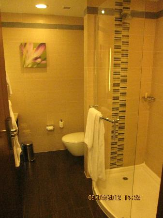 Hilton Garden Inn New Delhi / Saket: bathroom