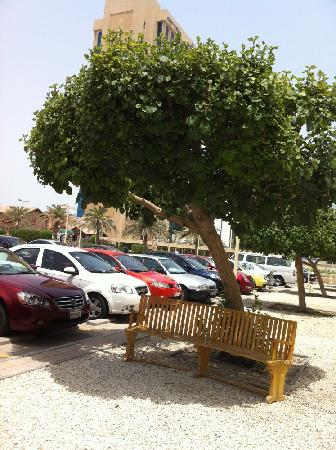 Seef Mall: taxi fellas camp here