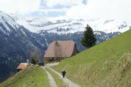 Le Gite du Passant : Gîte depuis un des chemins alentours