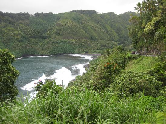 Road to Hana Tours 사진