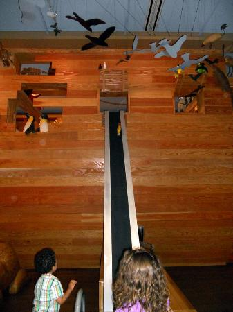 Photo of Museum Noah's Ark at the Skirball Cultural Center at 2701 N Sepulveda Blvd, Los Angeles, CA 90049, United States