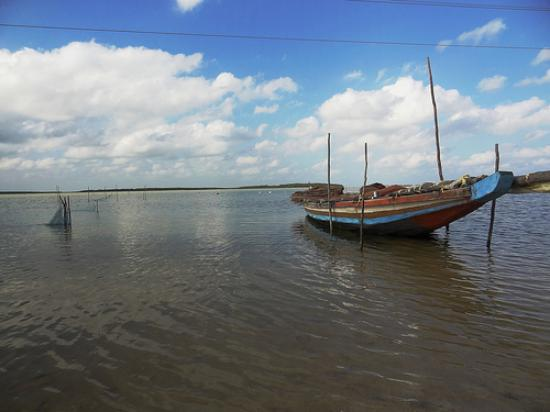 Nellore District, India: Pulicat Lake