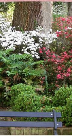 Cuthbert House Inn: Garden
