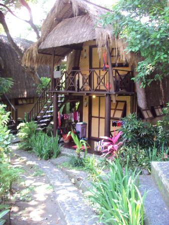 Bali Surf Camp
