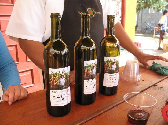Wine tasting at La Casa de Dona Lupe