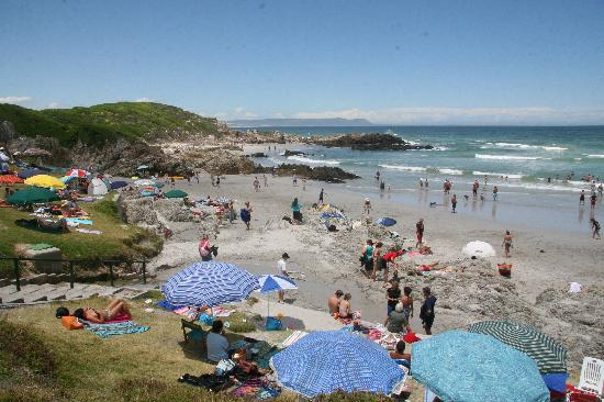 Hermanus Beach House: Voelklip Beach