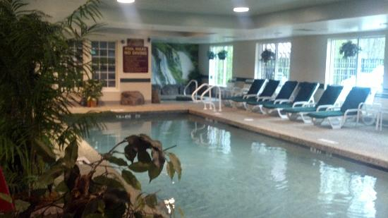 Comfort Inn & Suites: Nice looking pool and hot tub.