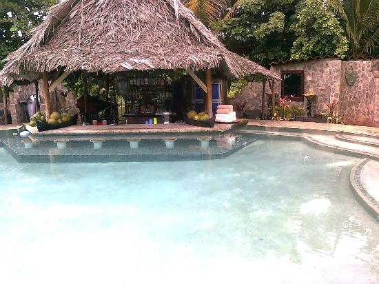 Popa Paradise Beach Resort : Swim-up bar