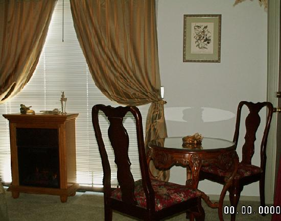 Bauers' Gilded Nest Bed and Breakfast Homestay: a view of table/chairs/faux fireplace heating