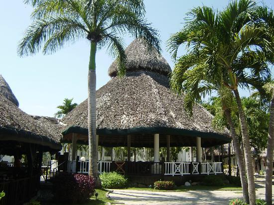 Be Live Experience Hamaca Suites : Bohio cerca de la playa