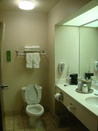 Hampton Inn Longmont: Guest Room Bathroom