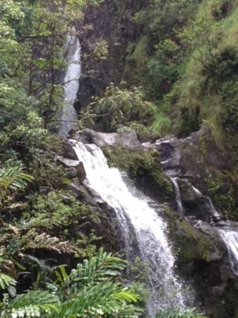 Road to Hana Tours: One of the many waterfalls we saw on the trip.