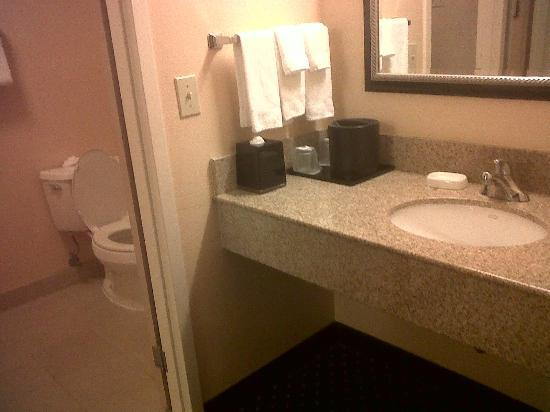 Courtyard by Marriott Orlando Airport: Vanity