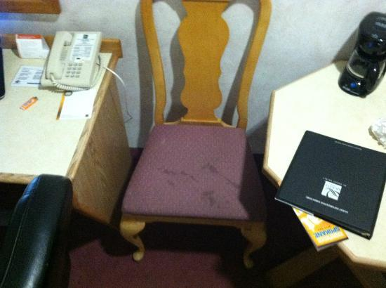 Quality Inn Oakwood: Gross Stained Chair