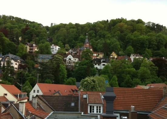 Hotel Goldener Falke: View from back of room