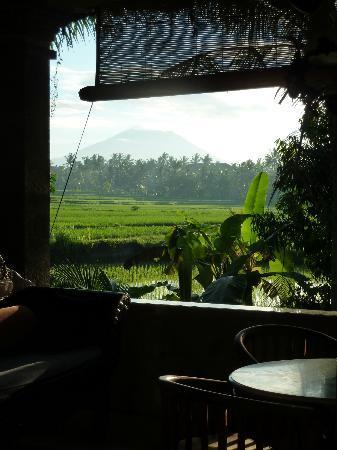 Alam Jiwa: View
