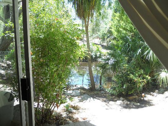 Waterland Lodge : Nice pond outside of room