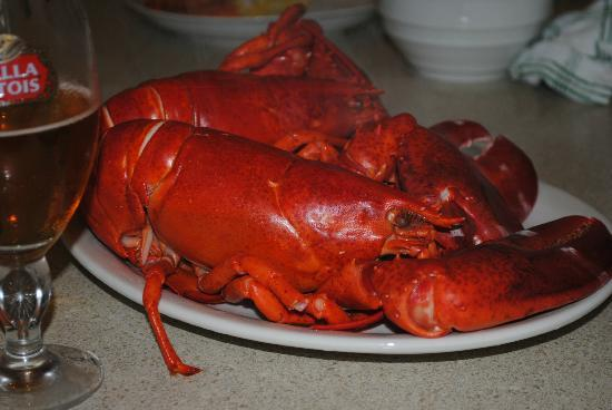 Wyndham Long Wharf Resort: Lobsters (cooked in room) purchased from sellers across from resort