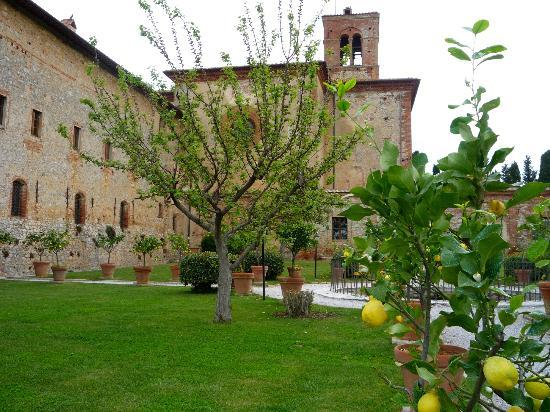 Agriturismo Sant'Anna in Camprena: il giardino