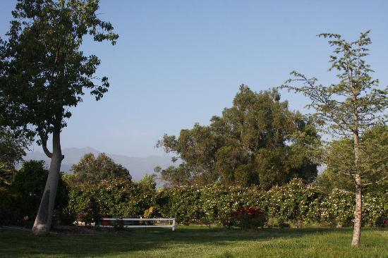 Ojai Rancho Inn: Picnic Spot