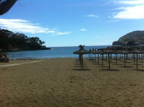 Grupotel Playa Camp de Mar: Local Beach