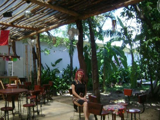 Hotel Palenque: agradable vegetacion y decoracion