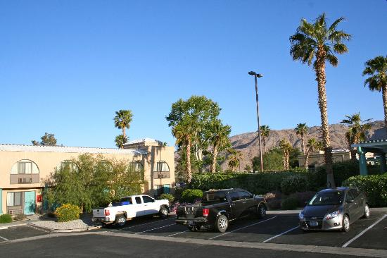 BEST WESTERN Gardens Hotel at Joshua Tree National Park: Grounds.
