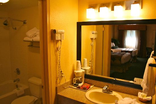 BEST WESTERN Gardens Hotel at Joshua Tree National Park: Washbowl.