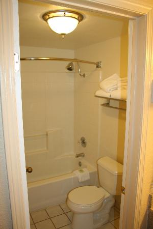 Best Western Gardens Hotel at Joshua Tree National Park : Tub/shower combo.