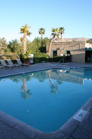 BEST WESTERN Gardens Hotel at Joshua Tree National Park: Great pool.