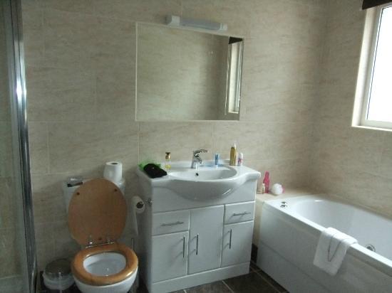 Craig-y-Dderwen Riverside Hotel: room 2