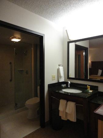 Hyatt Place Houston Bush Airport: Bathroom