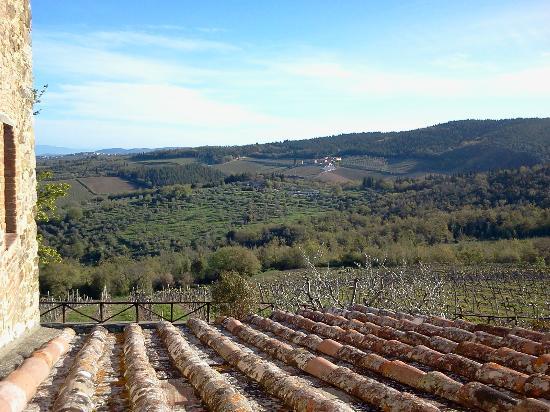 Romitorio di Serelle: Chianti countryside.